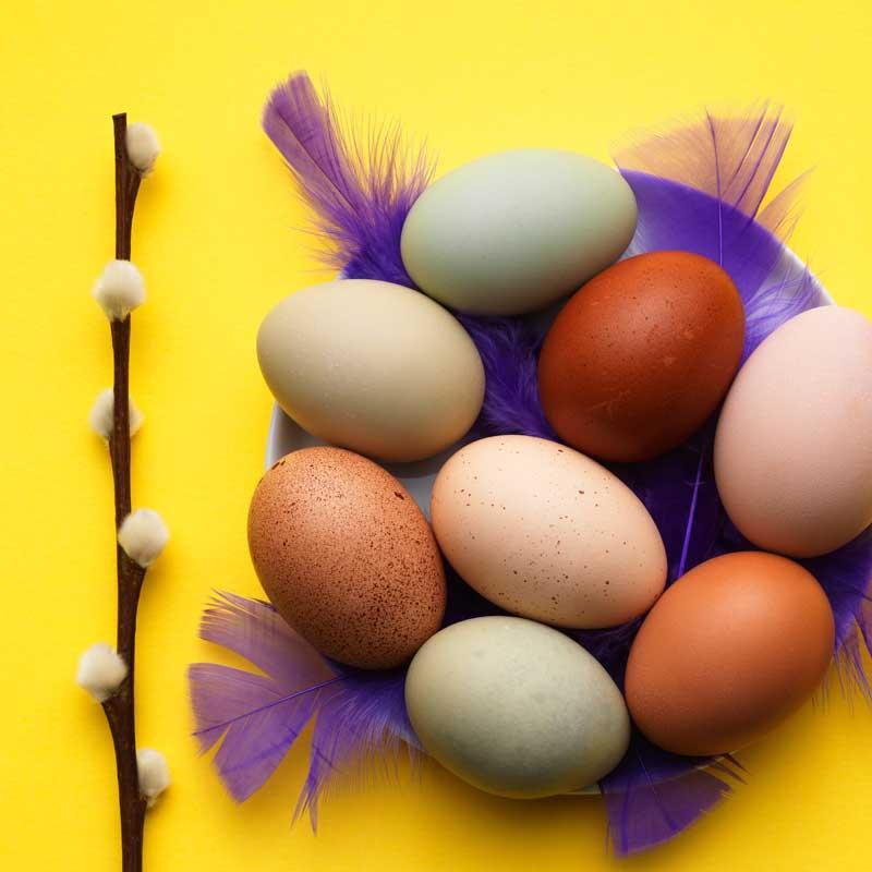 Äggets högtid, påsken är här