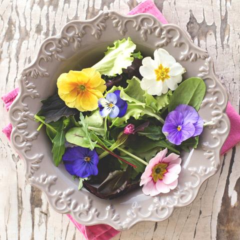 10 ätbara blommor | Elle